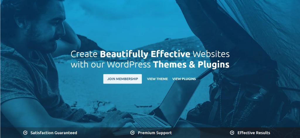 top_5_wordpress_themes_kadence